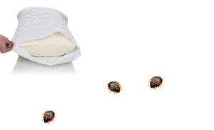 travesseiro-percevejo-cama